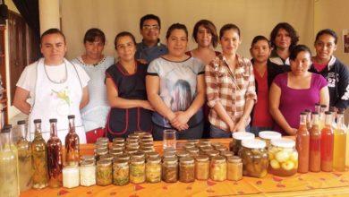 Photo of Mujeres aportan 37% del PIB en todo el país