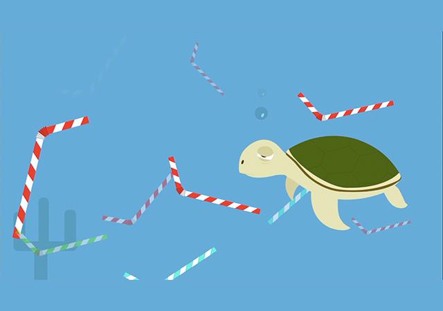 Tortugas ruegan dejemos de utilizar popotes