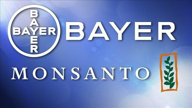 Bayer suprimirá el nombre de Monsanto adquiriéndolo por 63 mil millones de dólares.