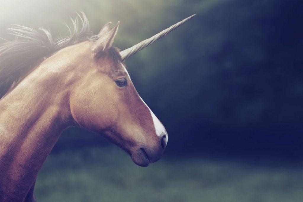 Unicornio Tecnológico