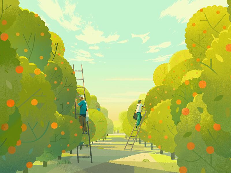 Sustentabilidad y agricultura
