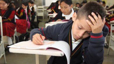 Educación según Unicef