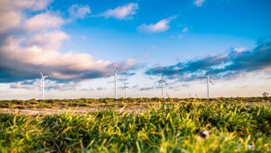 Photo of Economía verde puede generar empleos en LATAM