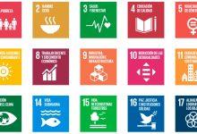 Existen 17 Objetivos de Desarrollo Sostenible (ODS), pero solo cinco de ellos representan más del 60% del capital invertido.