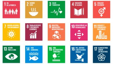 Photo of ¿Cuáles son los ODS que atraen más inversiones?