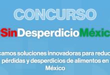 La propuesta ganadora del concurso #SinDesperdicioMéxico recibirá financiamiento por valor de US$15.000 y el segundo lugar US$10.000.