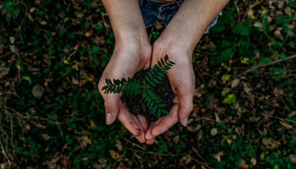 Hoy, 5 de junio es el Día Mundial del Medio Ambiente. Es el día más importante para fomentar la acción ambiental y celebrar la biodiversidad.