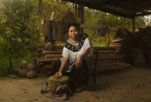 Photo of EthicHub inicia exportación de café ético Chiapas a Canadá, Europa y Asia