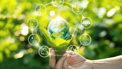 Photo of Stripe Climate, la primer plataforma de compra de carbono a gran escala